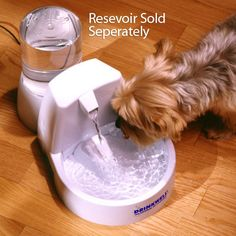 Drinkwell Original Pet Fountain, Automatic Dog Feeders Waterers   PetSolutions    For my spoiled rotten felines...