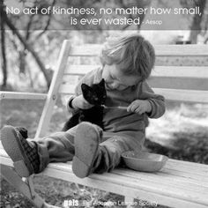 No act if kindness is ever wasted