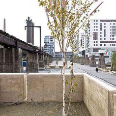 Pomiędzy wysokościowcami dzielnicy Belval Quest w luksemburskim Esch-sur-Alzette powstał miejski projekt położony na terenie byłych zakładów stalowych. W efekcie surowa, postindustrialna przestrzeń porośnięta przez chwasty nabrała nowego wigoru. http://www.sztuka-krajobrazu.pl/29/slajdy/aranzacja-postindustrialnej-przestrzeni-publicznej