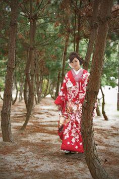 kimono 着物 色打掛 大手他店参考価格38万→98,000円 #japan #kimono #wedding #結婚式 #着物 #和装 #色打掛