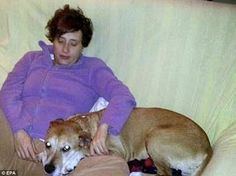 Oh dear! Spanish Ebola patient's dog is put to dea...