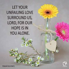 Let your unfailing love surround us, LORD, for our hope is in you alone. - Psalm 33:22 #NLT #Bible