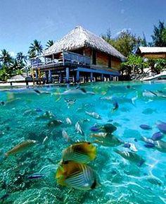 Hotel Bora Bora -