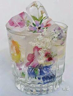 Bebidas: Cubos de gelo com flores comestíveis! Um arraso!