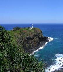 Kilauea Point National Wildlife Reserve. Great place to see Hawaiian Monk Seals, spinner dolphins, nesting birds, and many native plants.