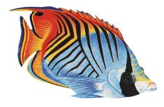 Porcelain Threadfin Butterfly Fish Large