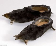 Do you have these in a size 7? A pair of shoes fashioned from dead moles