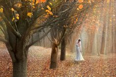 fall in georgia | Fall Wedding in North Ga. - Free online photo gallery at PhotoCamel ...