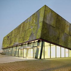 The Walls Are Alive, Thanks to Biological Concrete - A new design material turns building facades into soil-free stretches of vegetation via takepart.com