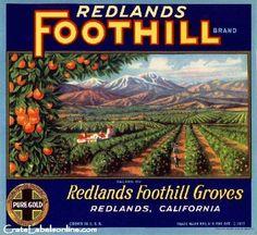 Foothill Groves, Redlands, California Vintage Orange Label