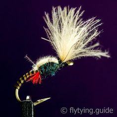 An emerger pattern tied with stripped peacock quill as the body, a small thorax made out of peacock dubbing, and a Cul-De-Canard wing to keep the fly in the surface film of the water. This pattern is tied in the style of Davie McPhail's excellent video which can be found here.