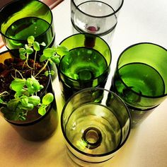 Recycled Self Watering JUMBO Wine Bottle Planter by Rehabulous, $33.00