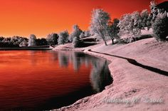 'Infrared Sunrise' by Anthony M. Davis - I could decorate a room around this photograph!