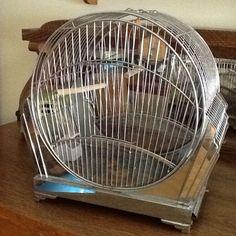 Vintage Art Deco W/ Chrome Bird Cage Antique Beauty!