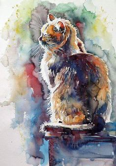 Backlit Cat Art Print by Kovacs Anna Brigitta - KatrinsKunst - . Backlit Cat Art Print by Kovacs Anna Brigitta – KatrinsKunst – # … – cats – Animals Watercolor, Watercolor Cat, Watercolor Ideas, Art And Illustration, Illustrations, Cat Drawing, Painting & Drawing, Cat Art Print, Art Plastique