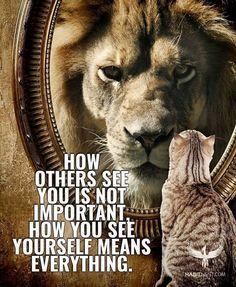 "soulmates-twinflames: "" How others see you is not important. How you see yourself means everything. www.relationshipsreality.com """