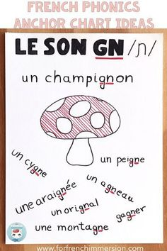 Phonics Anchor Charts in French - For French Immersion - Le son GN en français French Language Lessons, French Language Learning, French Lessons, Spanish Lessons, Spanish Language, Learning Spanish, Spanish Activities, French Tips, Dual Language