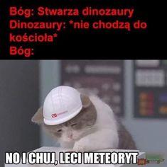 Very Funny Memes, Haha Funny, Hilarious, Lol, Memes Humor, Cat Memes, Jokes, Funny Lyrics, Polish Memes