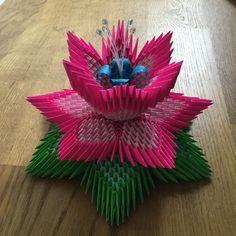 Lotus Crea