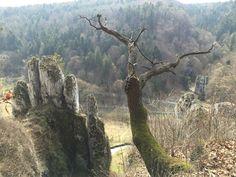 Skała Biała Ręka (the White Hand rock) in Ojców National Park in south Poland