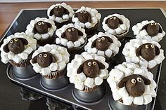 Cupcake-Schafe mit Marshmallow-Frosting (Rezept mit Bild)   Chefkoch.de