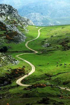 Winding path, Asturias, Spain photo by Jorge Sanz Martin Beautiful Roads, Beautiful World, Beautiful Landscapes, Beautiful Places, Asturias Spain, Spain Travel, Pathways, Belle Photo, Amazing Nature