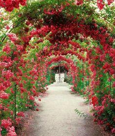 Canopies Plants Ideas Make Beautiful Garden23
