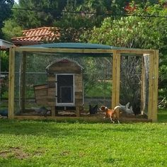 The Journey to Self Sufficiency: Coop Update  #chickens #backyardchickens #chickencoop #coop #homesteading #selfsufficiency