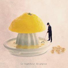 Kitchen Decor, Food Photography, Kitchen art , Lemon Photo, Mustard yellow, Pink lemonade party, Fresh Fruit, 6x6 (15x15cm). €14.50, via Etsy.