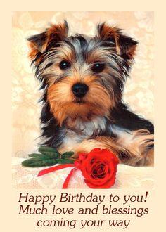 Items similar to 4 Dogs Puppy Puppies Yorkshire Terrier Toy Dog Greeting Notecards/ Envelopes Set on Etsy Birthday, Birthday Songs, Dog Background, Happy Birthday, Dog Wallpaper, Dog Blog, Animals, Dog Cat, Dog Clip Art