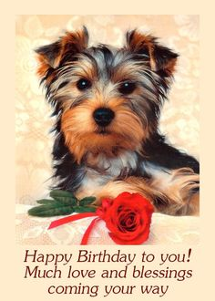 Happy Birthday Greeting!  Have a Happy Birthday,   (A.W.:)   Enjoy the day!