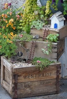 Boxed Stairstep Fairy Garden Creative Container