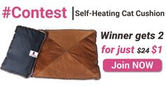 One winner will get 2 Self-Heating Cat Cushions for just $1!