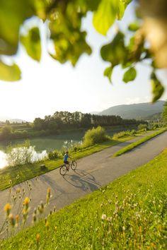 (c)Franz Gerdl #Biking #mountainbike #Drau #river #summer #carinthia #Villach Carinthia, Mountain Biking, Country Roads, River, Sport, Summer, Villach, Deporte, Summer Time
