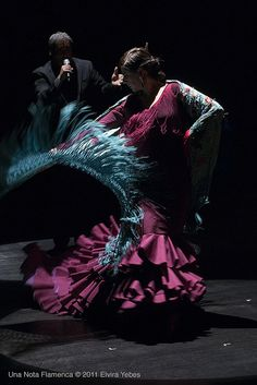 Flamenco Dancer, Carola Zertuche