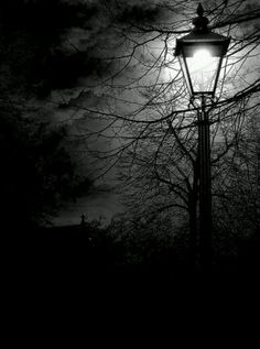Scary street found in midnight nightmares.