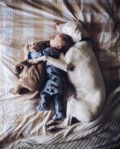 10 photos qui prouvent que votre enfant doit grandir avec un chien
