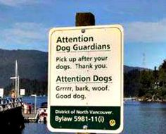 North Vancouver... the dog friendly city.