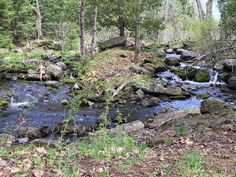 Gignac Family Adventures: May 24 at Silent Lake Provincial Park