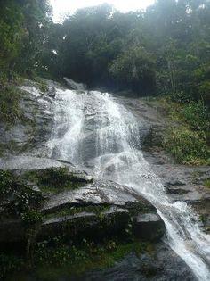 Rio de Janeiro Tijuca National Park Foto