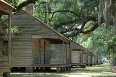 Abandoned Evergreen Plantation- Slave shacks