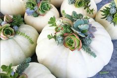 Simple Pumpkin Decorating Inspiration Simple pumpkin decorating inspiration photos with several styles from rustic to elegant. Find easy to duplicate pumpkin decorating ideas for fall and the holidays. Deco Floral, Arte Floral, Floral Design, Floral Prints, Fall Home Decor, Autumn Home, Blue Fall Decor, Elegant Fall Decor, Modern Fall Decor