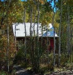 red cabin among autumn trees from tinyhouseblog