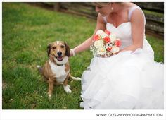 The bride included her precious dog, Rookie, in her bridal portrait session!  Lisa's Bridal Portraits at Old Salem Museum & Gardens, Winston-Salem, NC | NC Wedding Photographer | ©2013 Glessner Photography