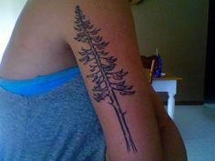 Beautiful redwood tattoo