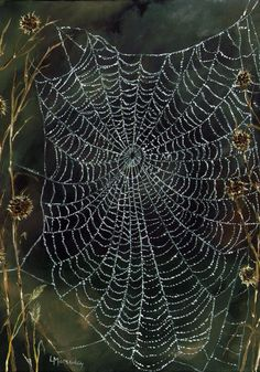 A beautiful spider web Spider Art, Spider Webs, Mother Earth, Mother Nature, What A Nice Day, Foto Macro, Itsy Bitsy Spider, Fotografia Macro, Mundo Animal