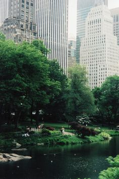 Central Park, N.Y.C