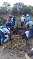 Taís Paranhos: Agroecologia em Afogados da Ingazeira