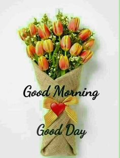 Good Morning Photos, Morning Images, Have A Good Night, Good Day, Happy Thursday, Happy Day, Morning Qoutes, Evening Quotes, Luxury Flowers