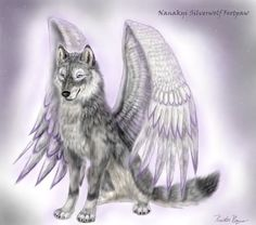 Wolf angel-this picture really shows how wolves can be angels just ...